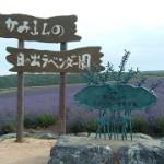 上富良野町日の出公園の発祥の地碑
