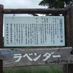 北の峰ラベンダー園看板の謎・上